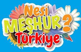 Rüzgar Gülü Nesi Meşhur Türkiye oyunu