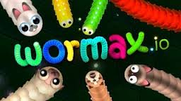 Wormax.io Skin oyunu