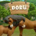 Doru Puzzle oyunu