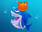 Köpekbalığı Dash oyunu