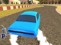 Gerçek Yarışçı 3D
