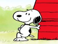 Ne Haber Snoopy