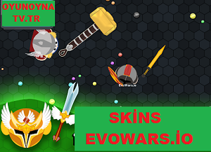Evowars.io Skin oyunu