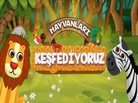 Hayvanları Keşfediyoruz TRT Çocuk
