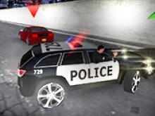 Polis Simülatörü