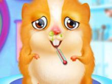 Sofia Hamster Mumu Bakımı