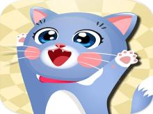 Mutlu Kedi