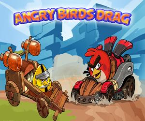 Angry Birds Oyna oyunu