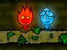 Ateş ve Su Kız Orman Tapınağı oyunu