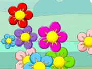 Çiçek Zuma