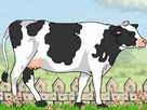 inek Bakımı oyunu