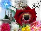 islami Bilgi
