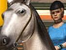 Koşu Atı 3