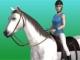 Koşu atı