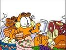 Obur Garfield Oyunu  oyunu