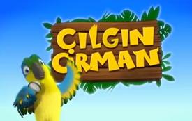 Çılgın Orman Çizgi Film oyunu
