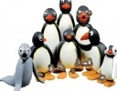 Pingu Ailesi oyunu