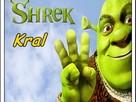 Shrek Bataklık Macerası