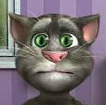 Talking Tom oyunu